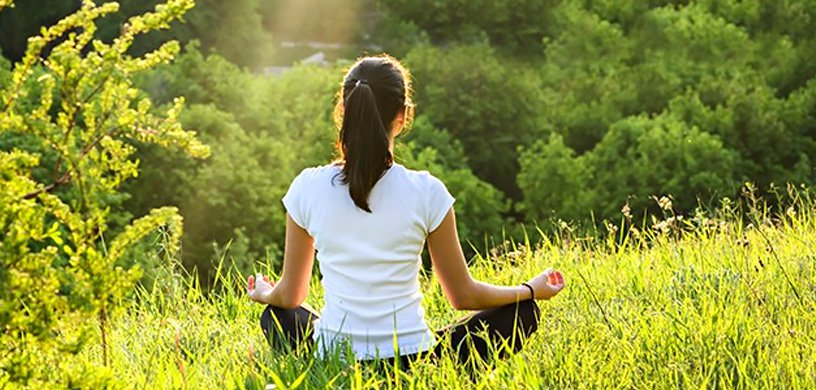 Why we Should Meditate in the Woods